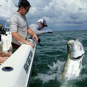 Fisherman catching tarpon from a skeeter boat.